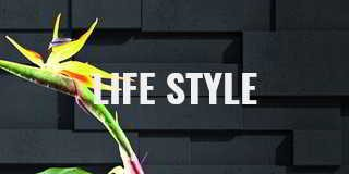 Life Style 3d Wandpaneele hier online bestellen
